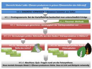 Übersicht Modul 1a&b:  Pflanzen produzieren in grünen Pflanzenteilen den Nährstoff Stärke