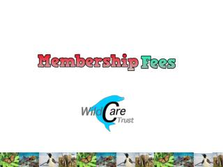 Membership Fees Research – Wildlife Trust