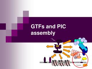 GTFs and PIC assembly