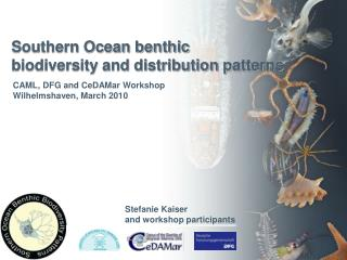 Southern Ocean benthic  biodiversity and distribution patterns