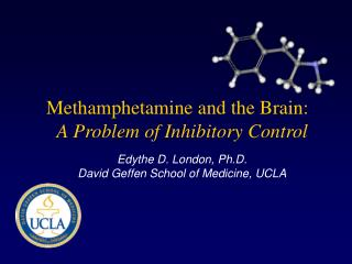Methamphetamine and the Brain:   A Problem of Inhibitory Control