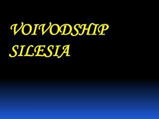 VOIVODSHIP   SILESIA