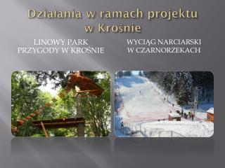 Działania w ramach projektu  w Krośnie