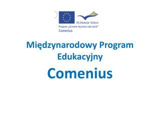 Międzynarodowy Program Edukacyjny