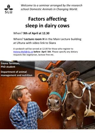 Factors affecting sleep  in  dairy cows