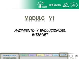 MODULO    VI