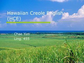Hawaiian Creole English HCE