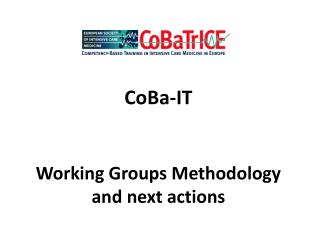 CoBa-IT  Working Groups Methodology and next actions