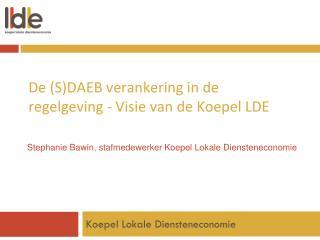De (S)DAEB verankering in de regelgeving - Visie van de Koepel LDE