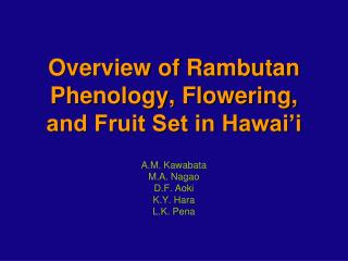 Overview of Rambutan Phenology, Flowering, and Fruit Set in Hawai'i