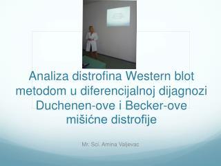 Mr.  S ci. Amina Valjevac