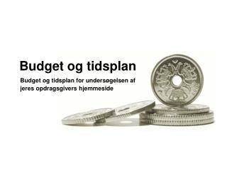 Budget og tidsplan