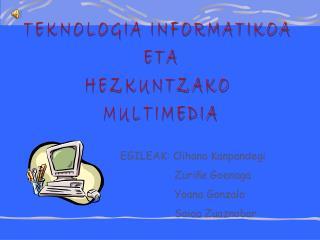 TEKNOLOGIA INFORMATIKOA  ETA HEZKUNTZAKO  MULTIMEDIA