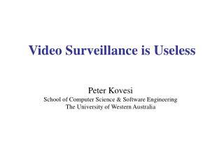 Video Surveillance is Useless