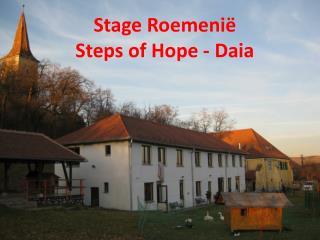 Stage Roemenië  Steps of Hope - Daia