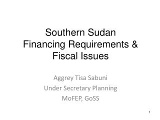 Southern Sudan  Financing Requirements  Fiscal Issues
