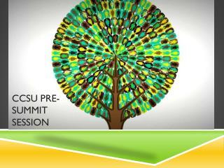 CCSU Pre-summit session