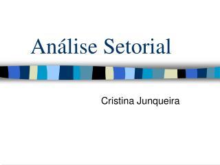 An�lise Setorial