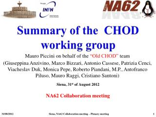 Summary of the  CHOD  working group