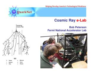 Cosmic Ray  e-Lab Bob Peterson Fermi National Accelerator Lab