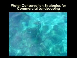 Water Conservation Strategies for Commercial Landscaping