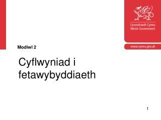 Cyflwyniad i fetawybyddiaeth