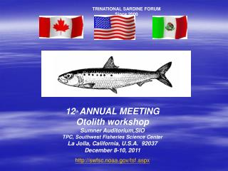 TRINATIONAL SARDINE FORUM Since 2000