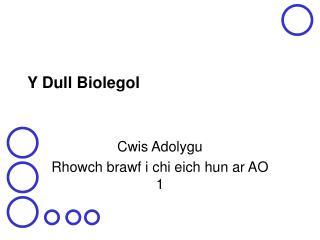 Y Dull Biolegol