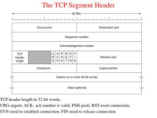 The TCP Segment Header