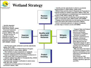 Identify priority watersheds in which to accelerate implementation in 2008  (States, USGS, EPA)