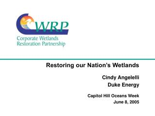Restoring our Nation's Wetlands Cindy Angelelli Duke Energy Capitol Hill Oceans Week  June 8, 2005