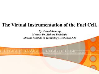 The Virtual Instrumentation of the Fuel Cell.