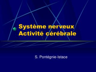 Système nerveux Activité cérébrale