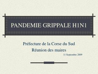 PANDEMIE GRIPPALE H1N1