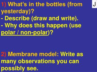 1)  What's in the bottles (from yesterday)?  - Describe (draw and write).
