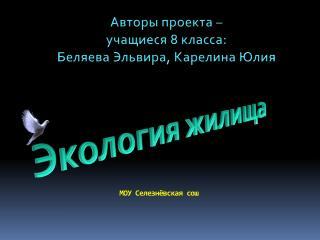 МОУ  Селезнёвская сош