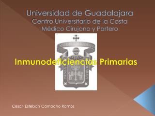 Universidad de Guadalajara Centro Universitario de la Costa Médico Cirujano y Partero