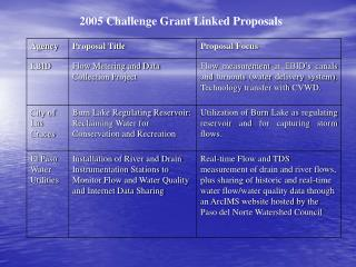 2005 Challenge Grant Linked Proposals