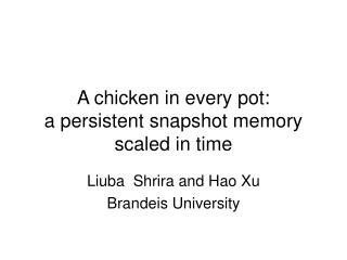 A chicken in every pot: a persistent snapshot memory scaled in time