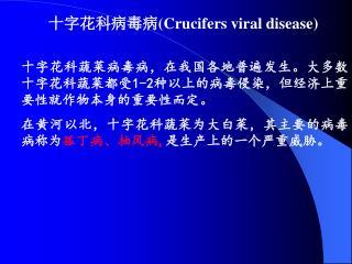 十字花科病毒病( Crucifers viral disease)
