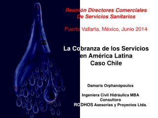 Reunión Directores Comerciales De  Servicios Sanitarios Puerto Vallarta, México, Junio 2014
