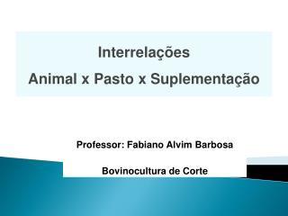 Professor: Fabiano Alvim Barbosa Bovinocultura de Corte