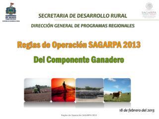 SECRETARIA DE DESARROLLO RURAL DIRECCIÓN GENERAL DE PROGRAMAS REGIONALES