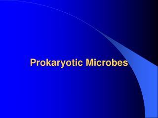 Prokaryotic Microbes