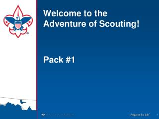 Welcome to the Adventure of Scouting!
