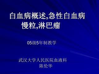 白血病概述 , 急性白血病          慢粒 , 淋巴瘤 05 级 5 年制教学              武汉大学人民医院血液科