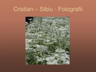 Cristian – Sibiu - Fotografii