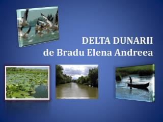 DELTA DUNARII de  Bradu  Elena  Andreea