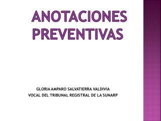 Anotaciones preventivas