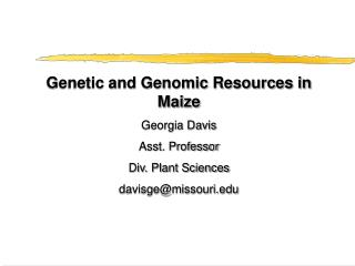 Genetic and Genomic Resources in Maize Georgia Davis Asst. Professor Div. Plant Sciences